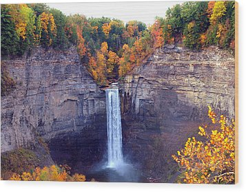 Taughannock Waterfalls In Autumn Wood Print