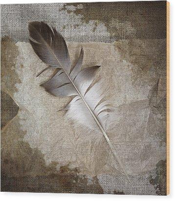 Tea Feather Wood Print by Carol Leigh