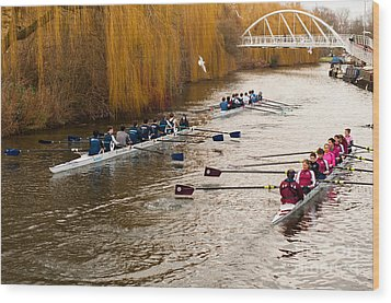 Teams Of Rowers On River Cam Wood Print