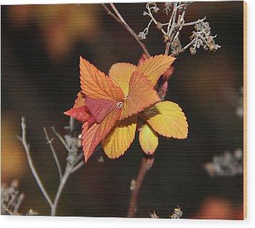 Tear Wood Print by Sergey and Svetlana Nassyrov