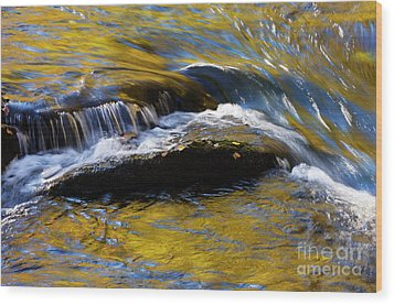 Wood Print featuring the photograph Tellico River - D010004 by Daniel Dempster