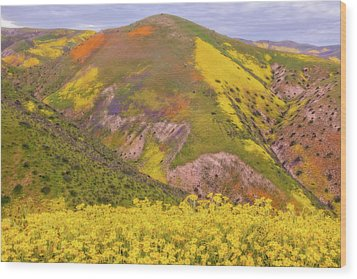 Wood Print featuring the photograph Temblor Range Color by Marc Crumpler