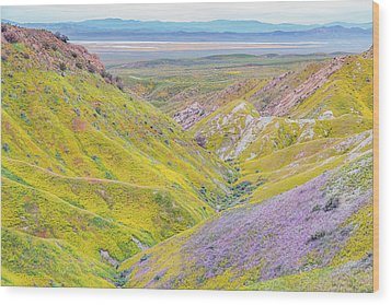 Wood Print featuring the photograph Temblor Range View To Caliente Range by Marc Crumpler