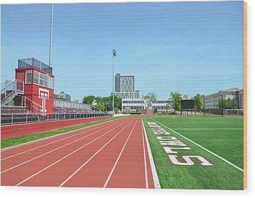 Temple Owls - Dan And Shelley Boyce Track Wood Print by Bill Cannon