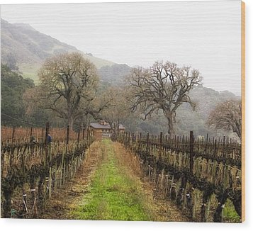 Tending The Grapes Wood Print by Lynn Andrews