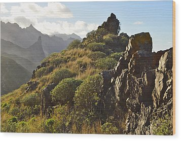 Tenerife Canary Islands Wood Print by Marek Stepan