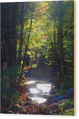 Tennessee Spring Wood Print by Brittany Horton