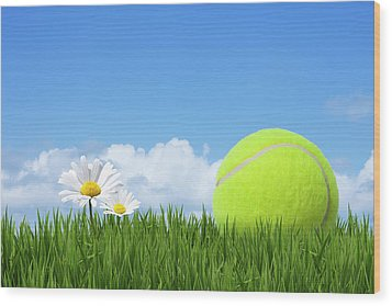Tennis Ball Wood Print by Andrew Dernie
