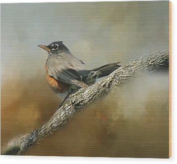Teressia's Spring Robin  Wood Print by TnBackroadsPhotos