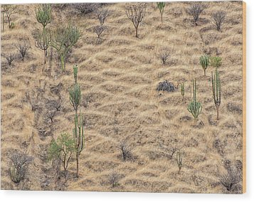Wood Print featuring the photograph Terraced Slope by Britt Runyon