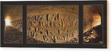 Wood Print featuring the photograph Terry Tunnel Triptych by Leland D Howard