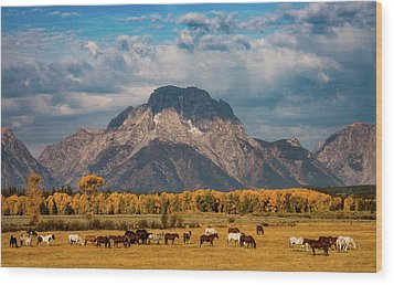 Wood Print featuring the photograph Teton Horse Ranch by Darren White