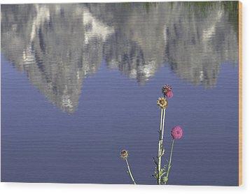 Teton Reflections Wood Print by Elizabeth Eldridge