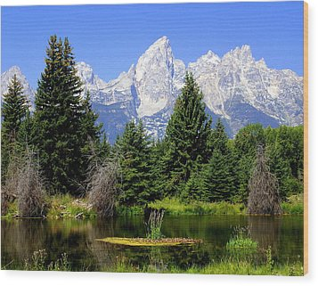 Tetons Wood Print by Marty Koch