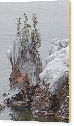 Wood Print featuring the photograph Tettegouche by Mary Amerman