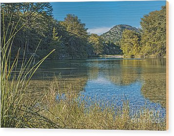 Texas Hill Country - The Frio River Wood Print by Andre Babiak