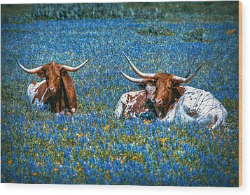Texas In Blue Wood Print by Linda Unger