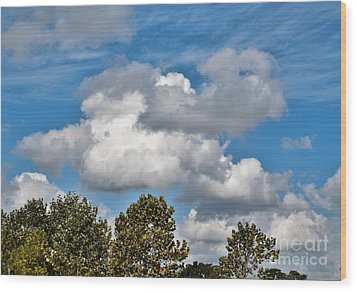Wood Print featuring the photograph Texas - Reach For The Sky.   by Ray Shrewsberry