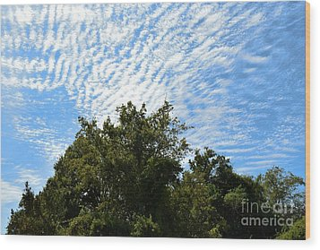 Wood Print featuring the photograph Texas Scene - Midday  by Ray Shrewsberry