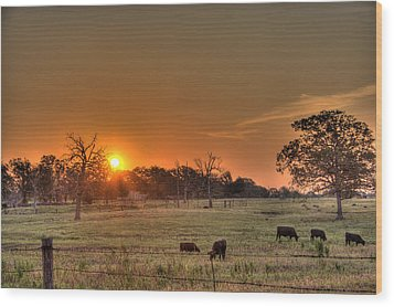 Texas Sunrise Wood Print by Barry Jones