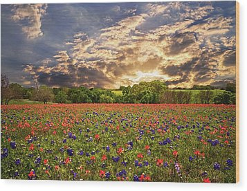 Texas Wildflowers Under Sunset Skies Wood Print
