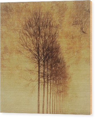 Wood Print featuring the mixed media Textured Eerie Trees by Dan Sproul