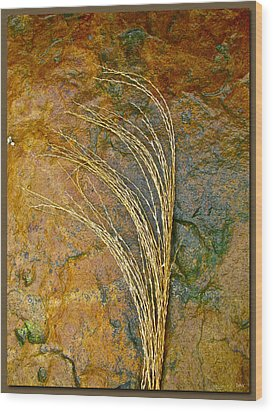 Textured Nature Wood Print