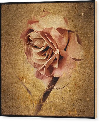 Textured Rose Wood Print by Jessica Jenney