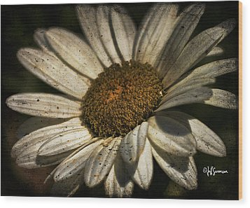 Textured White Flower Wood Print