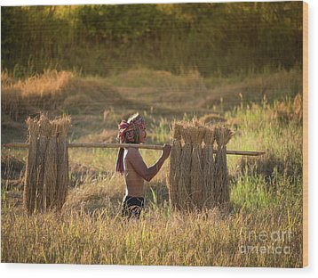 Wood Print featuring the photograph Thai Farmer Carrying The Rice On Shoulder After Harvest. by Tosporn Preede