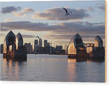 Thames Barrier And Seagulls Wood Print