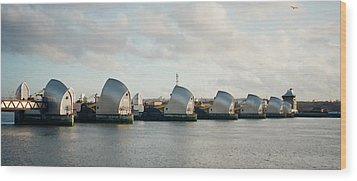 Thames Barrier Wood Print by Dorothy Berry-Lound