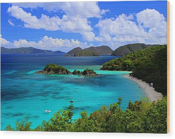 Thank You St. John Usvi Wood Print by Fiona Kennard