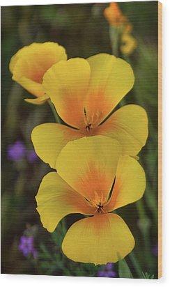 Wood Print featuring the photograph That Golden Spring Glow  by Saija Lehtonen