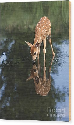 That Must Be Me Wood Print by Sandra Bronstein