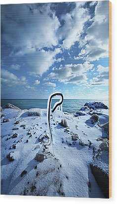Wood Print featuring the photograph That One Weird Thing by Phil Koch