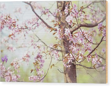 Wood Print featuring the photograph That Tender Joyful Spring by Jenny Rainbow