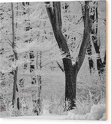 That Winter Wood Print by Odd Jeppesen