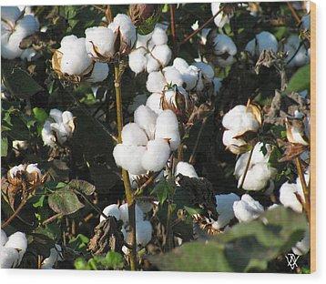 Thats A Cotton Boll Wood Print