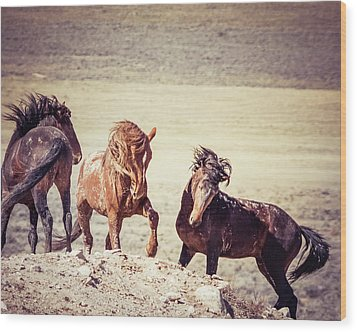 Wood Print featuring the photograph The 3 Amigos by Mary Hone