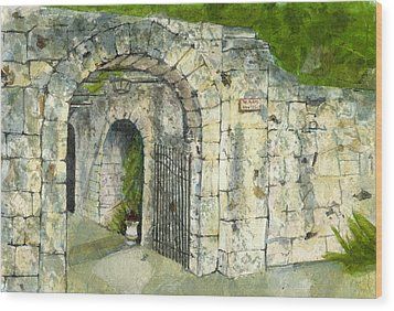 Wood Print featuring the mixed media The Alamo by Lynn Babineau