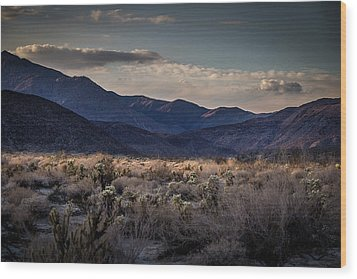 Wood Print featuring the photograph The American West by Peter Tellone