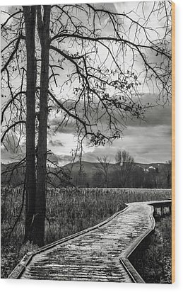 Wood Print featuring the photograph The Appalachian Trail by Eduard Moldoveanu