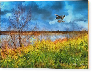 The Arrival Of Spring . 7d12643 Wood Print by Wingsdomain Art and Photography