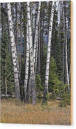 The Aspens Wood Print