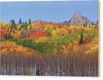 The Autumn Blanket Wood Print