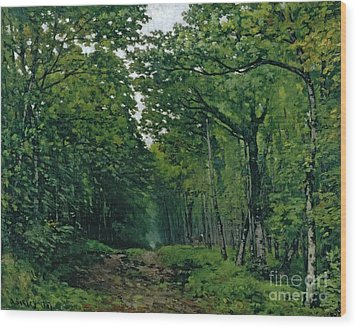 The Avenue Of Chestnut Trees Wood Print by Alfred Sisley
