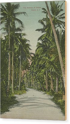Wood Print featuring the photograph The Avenue Of Palms Guam Li by eGuam Photo