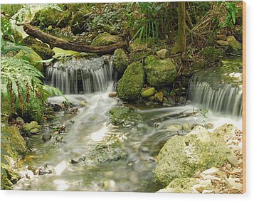 The Babbling Brook Wood Print