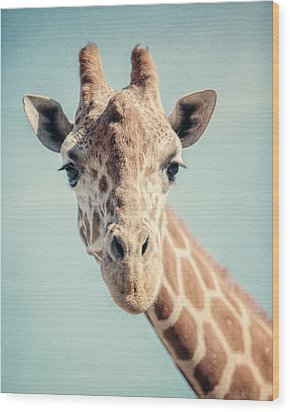 The Baby Giraffe Wood Print by Lisa Russo